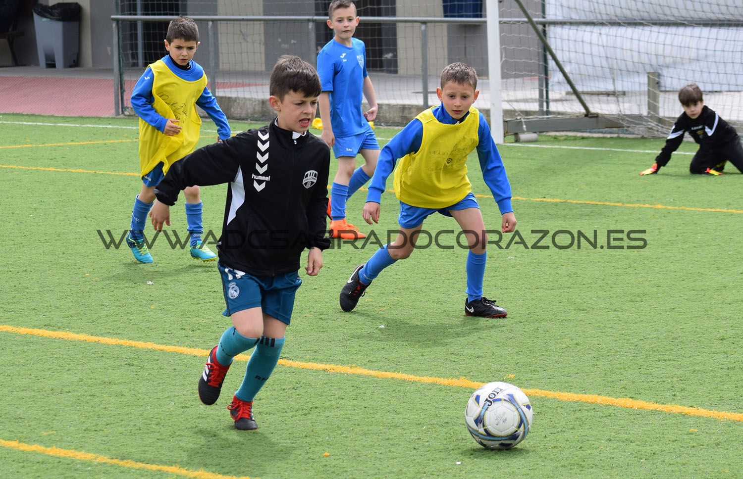 clinic-celta-sagrado (50)